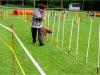 agility-23-09-9
